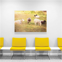 Waiting room with yellow A-Line modular bench with dividing white tables and picture